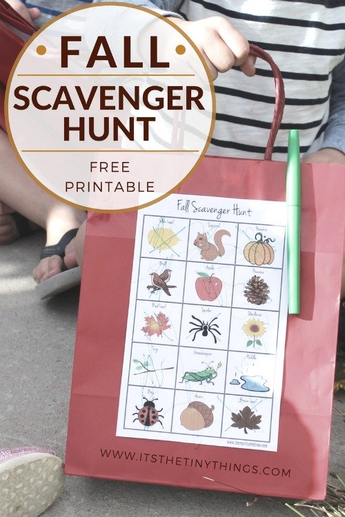 1-fall-scavenger-hunt-feature-image